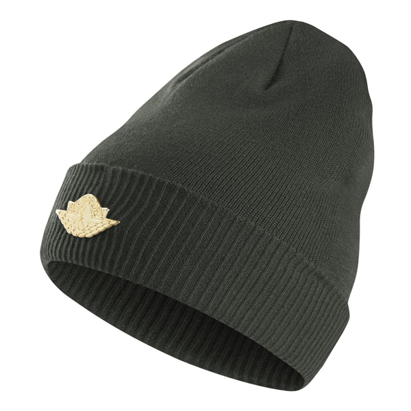 d0100c385c51 ... canada air jordan jumpman knit hat groove green 801770 327. view full  size image e9029