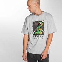Dangerous DNGRS / T-Shirt Snake in grey