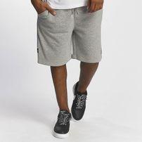 Rocawear / Short Basic in grey